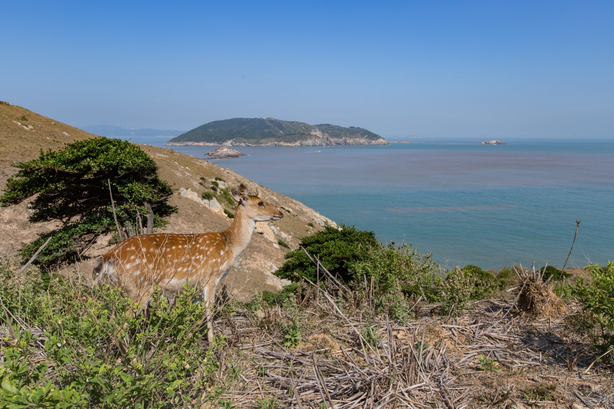 大坵島の美景