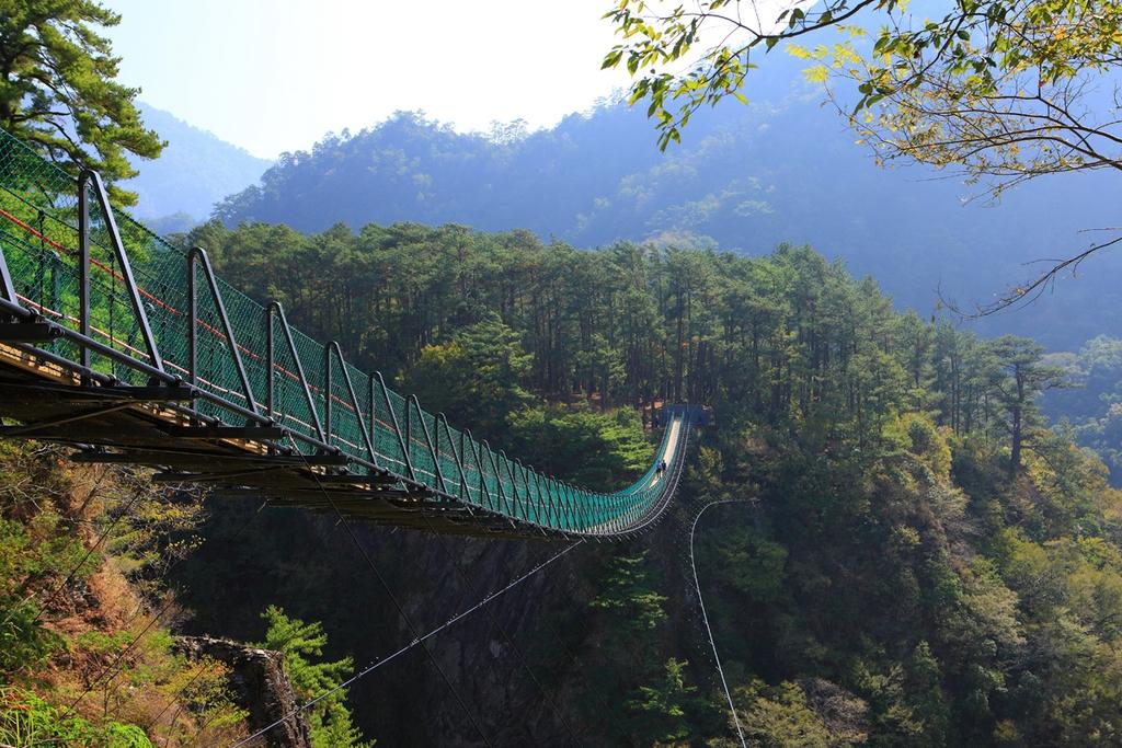 奥万大吊り橋