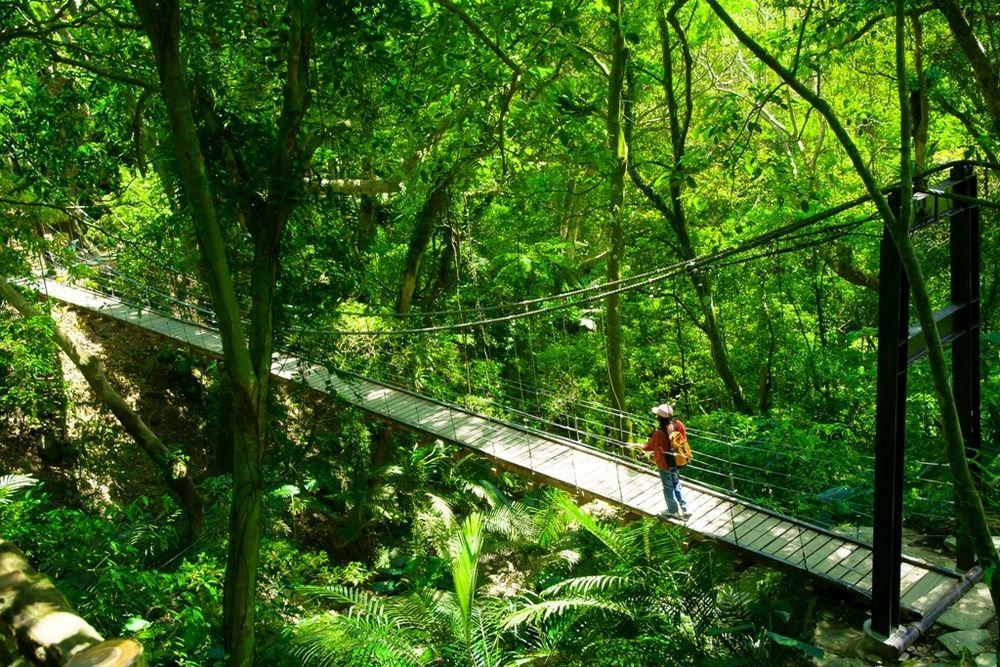 大板根森林温泉リゾートの温泉施設