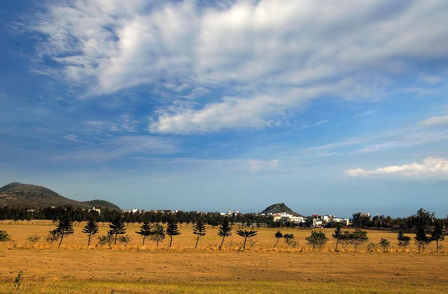 牧場の景色