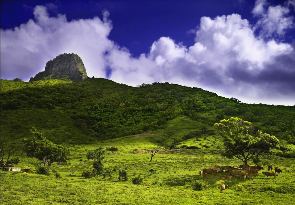 大尖石山を眺める