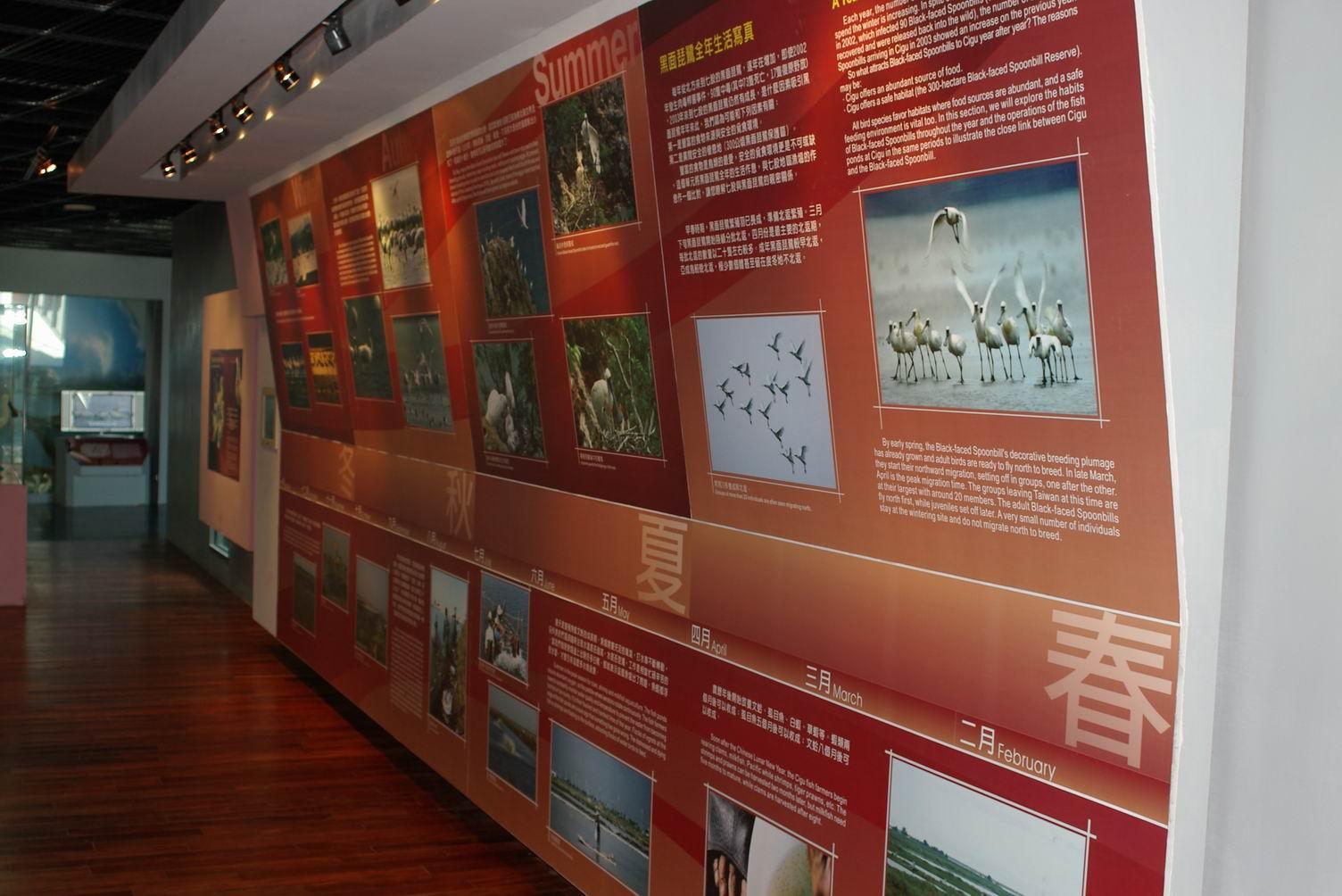 クロツラヘラサギ生態展示館の内部