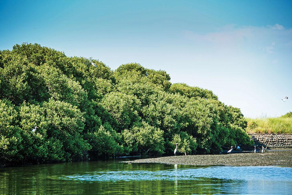 台江国家公園の美景