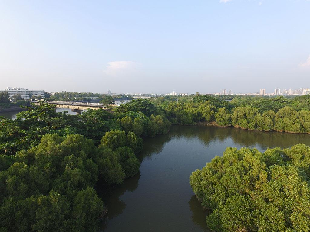 援中港湿地公園