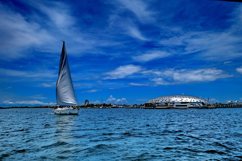 濱湾の心を眺める