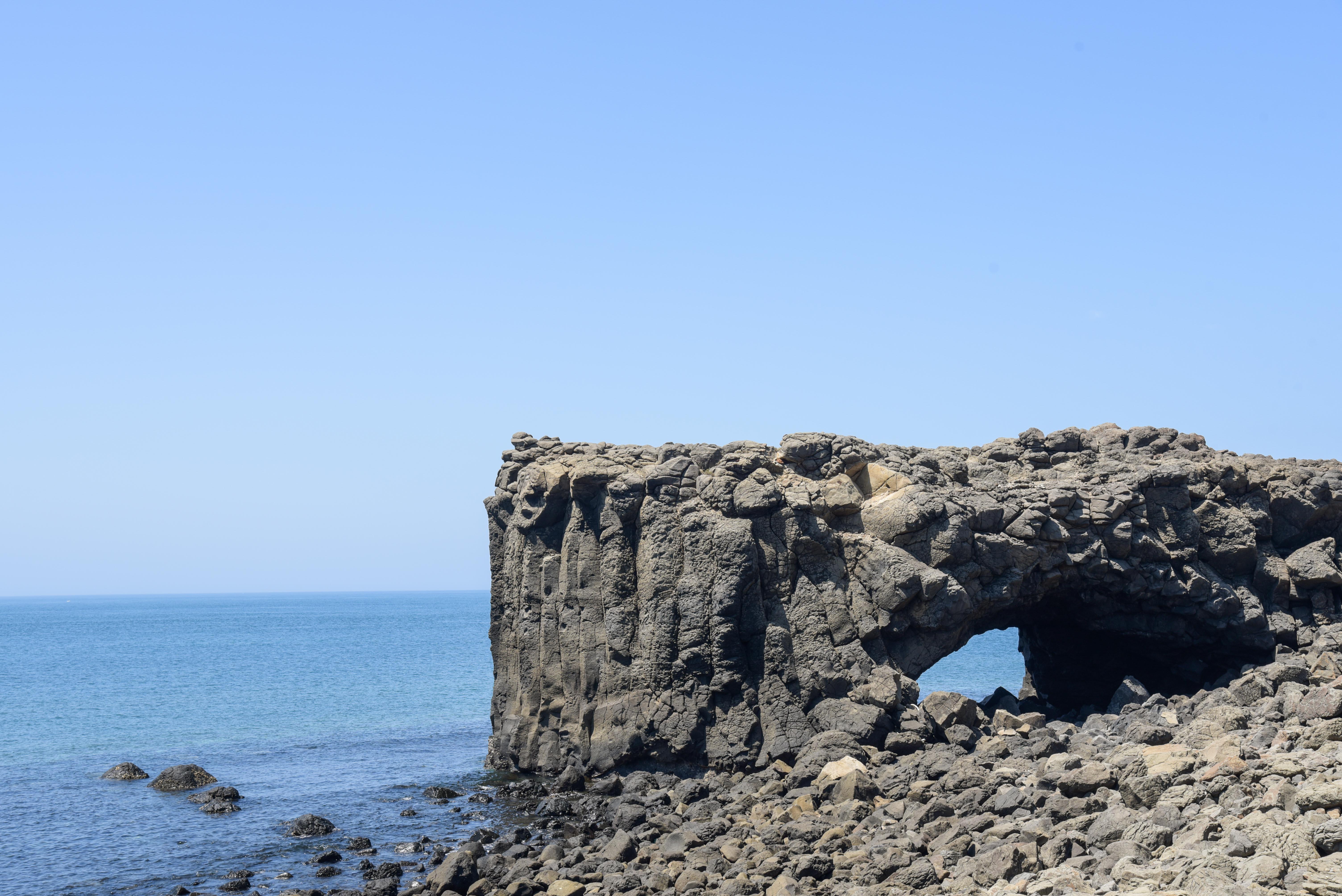 小門地質館のクジラの石