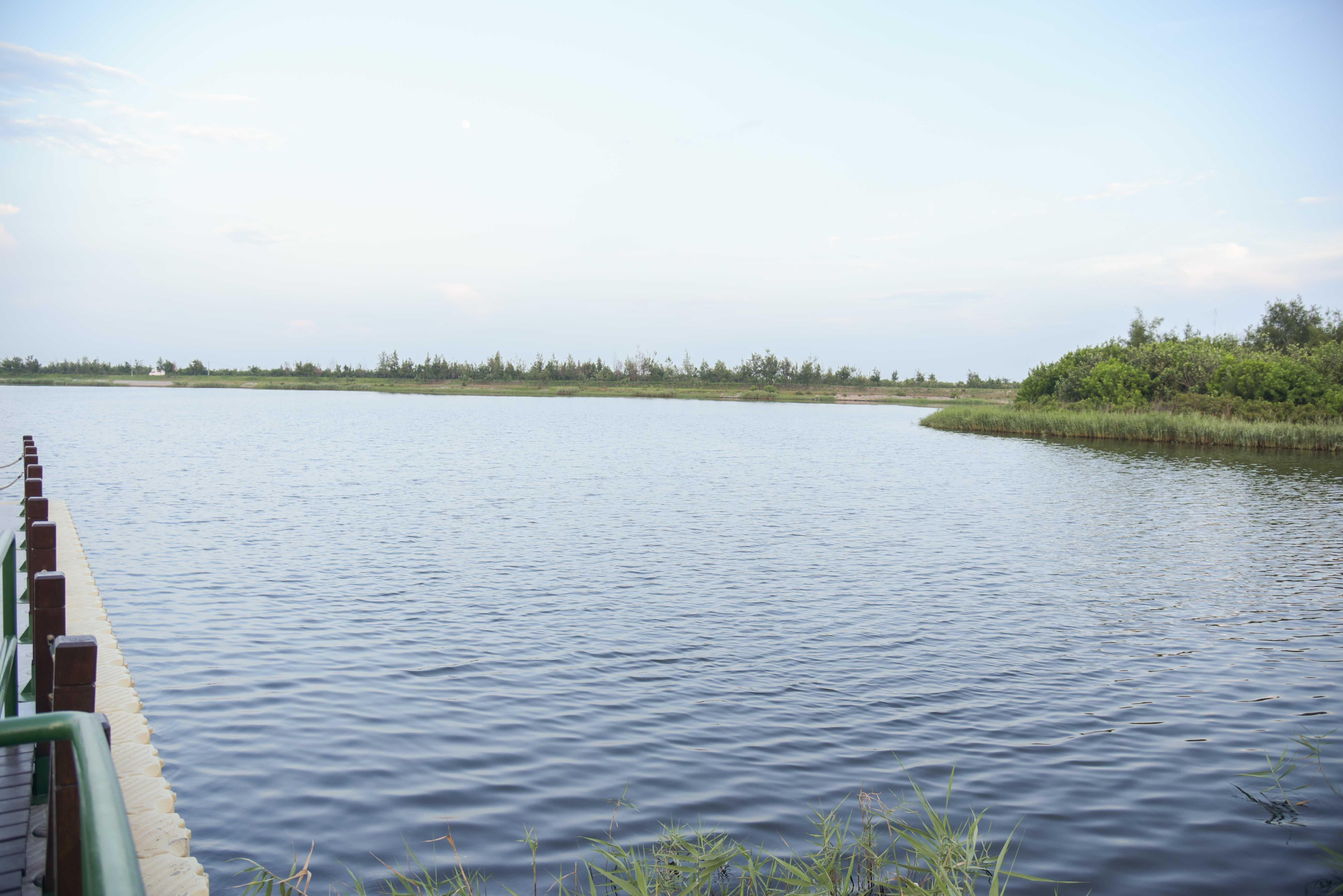椬梧帯湖景観公園の景色