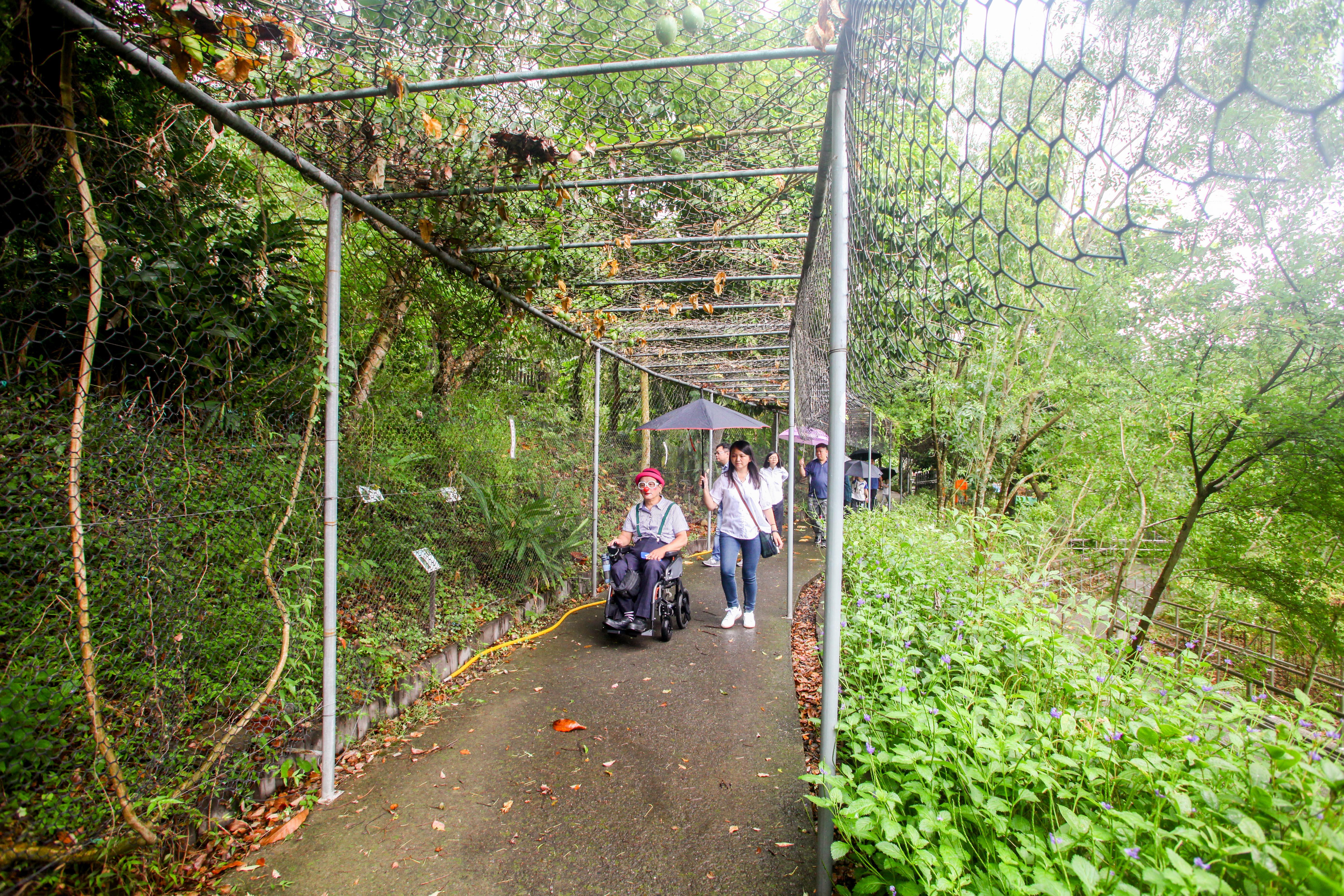 生態園区の回廊