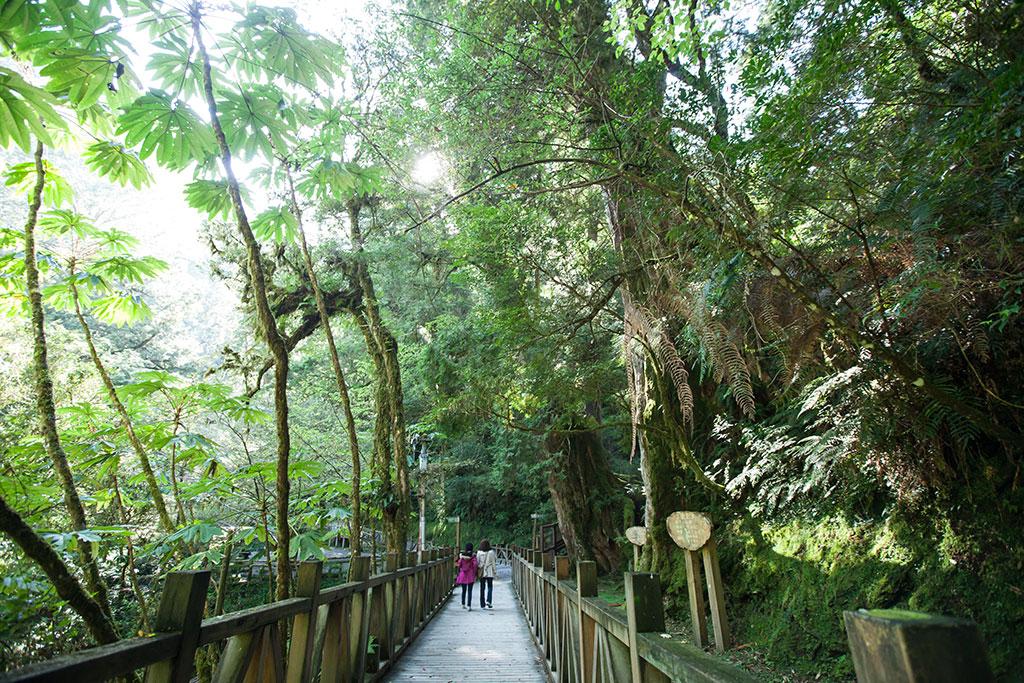 拉拉山自然保護区