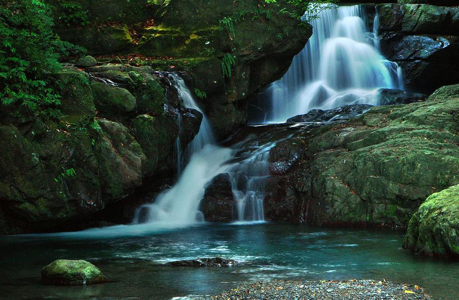 満月圓国家森林遊楽区の風景