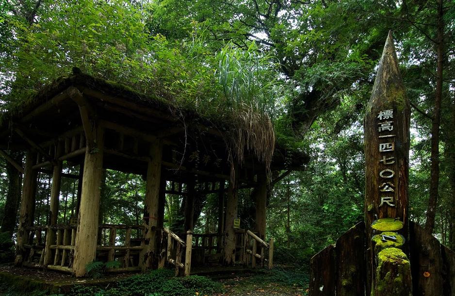 棲蘭森林遊楽区