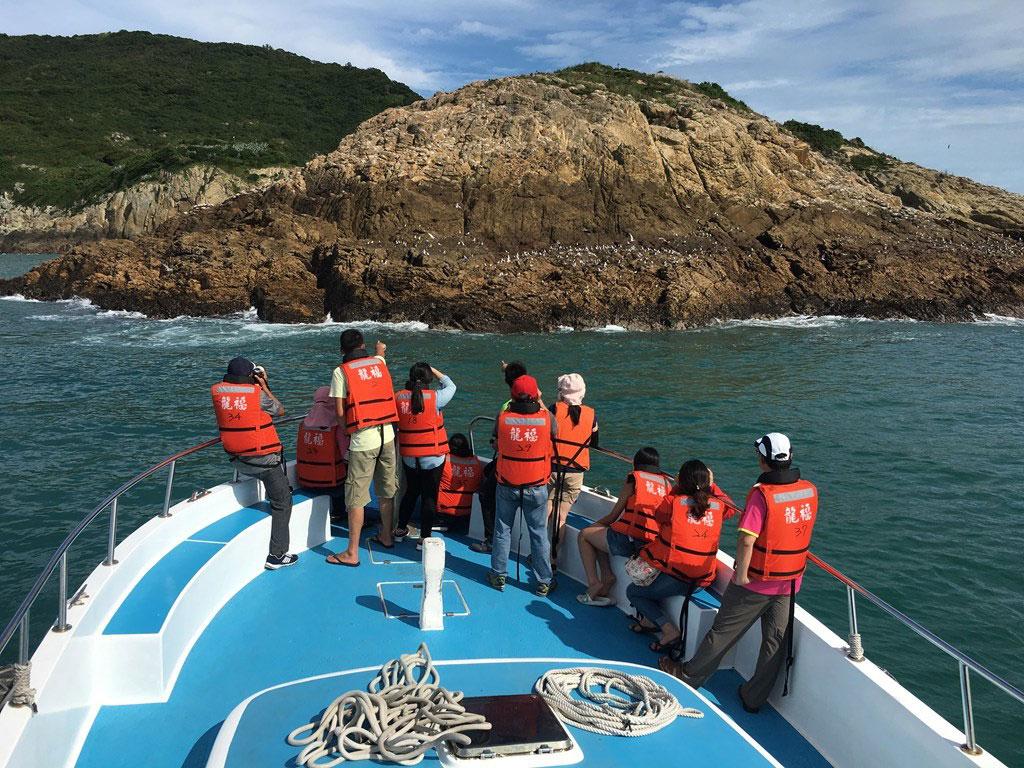 アジサシの生態観察-馬祖島クルージング(2)