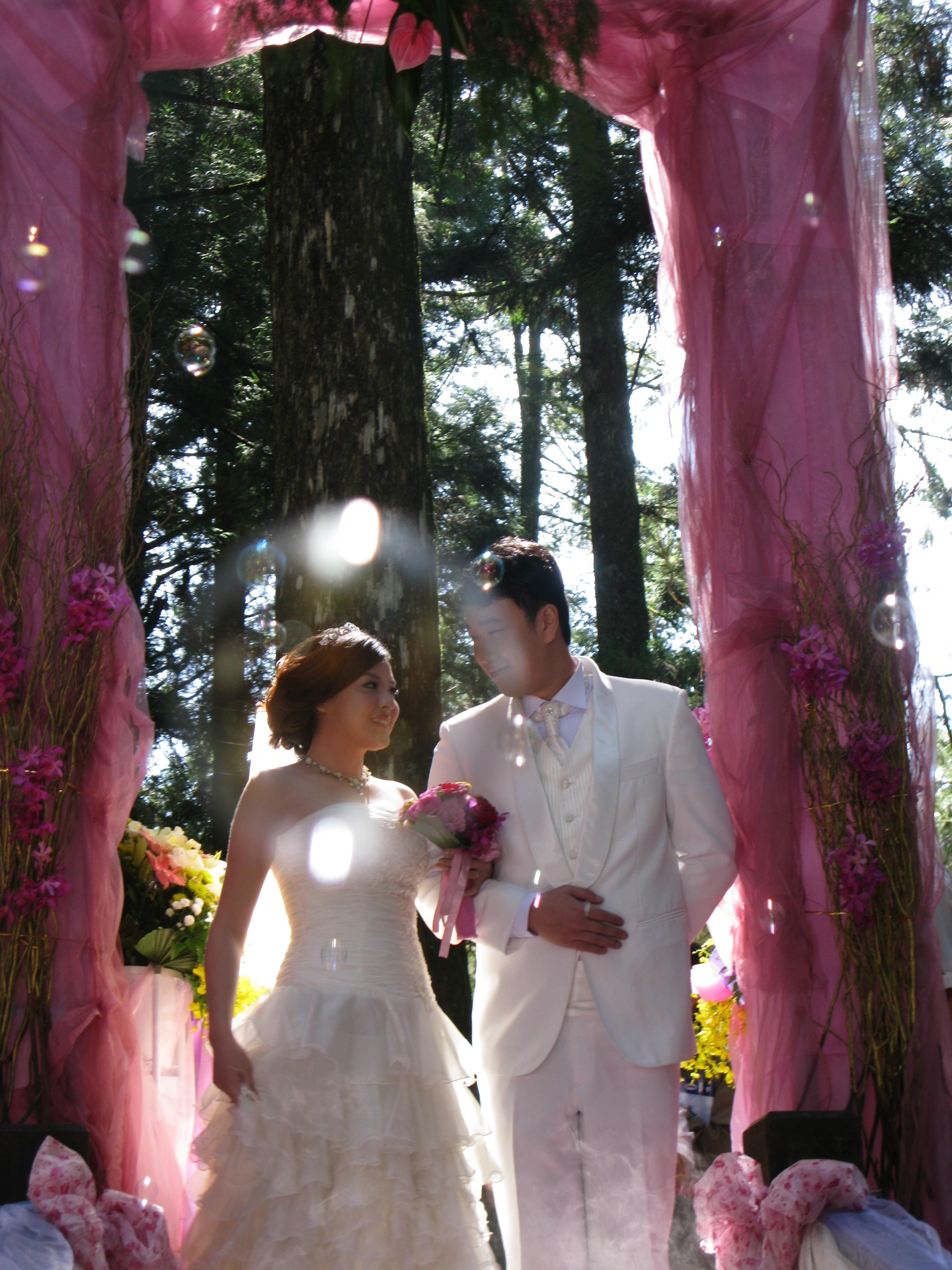 ロマンチック阿里山神木ウェディング