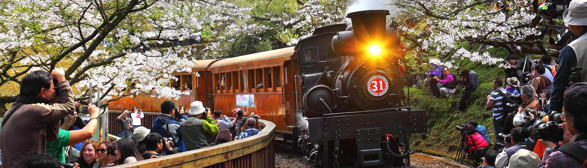 阿里山林業鉄道