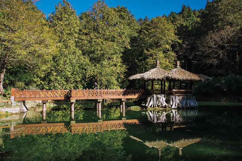阿里山国家森林遊楽区