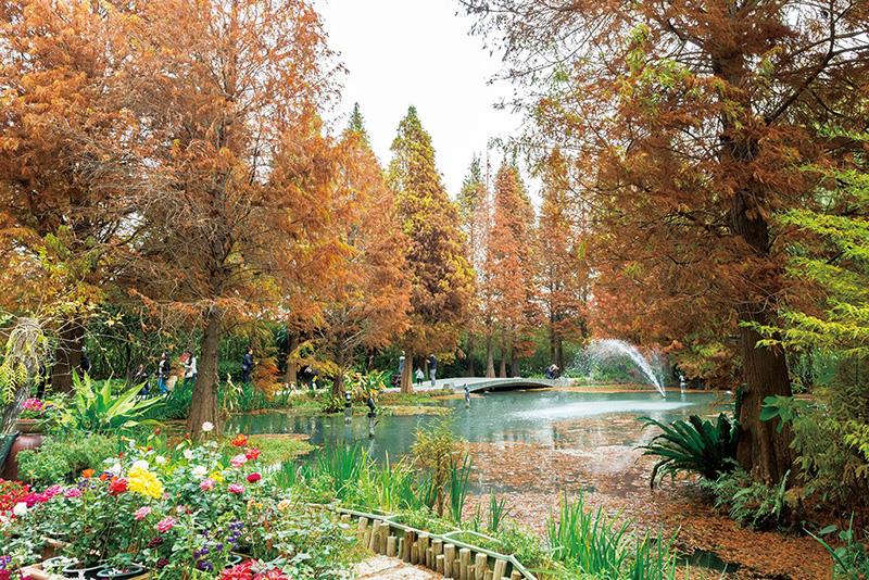 田尾道路花園