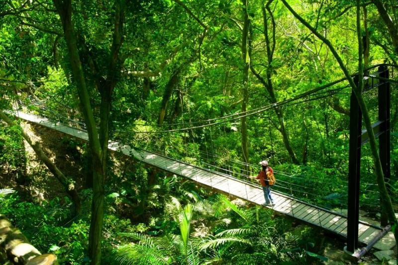 大板根森林温泉リゾート