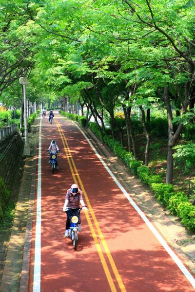 東豊サイクリンググリーンベルト