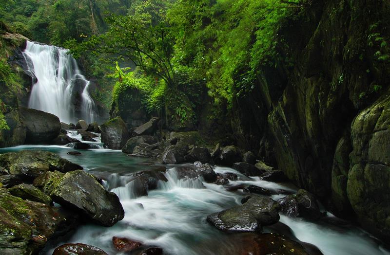 内洞国家森林遊楽区