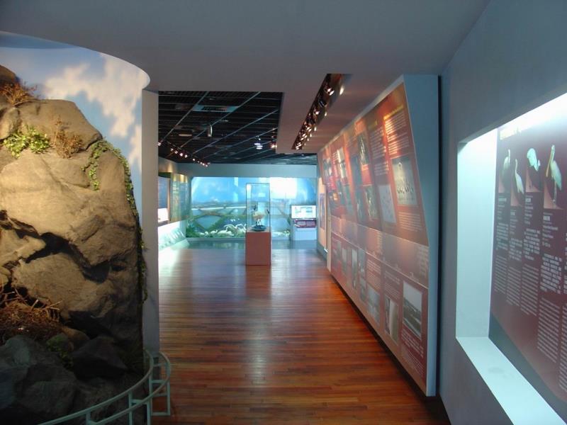クロツラヘラサギ生態展示館