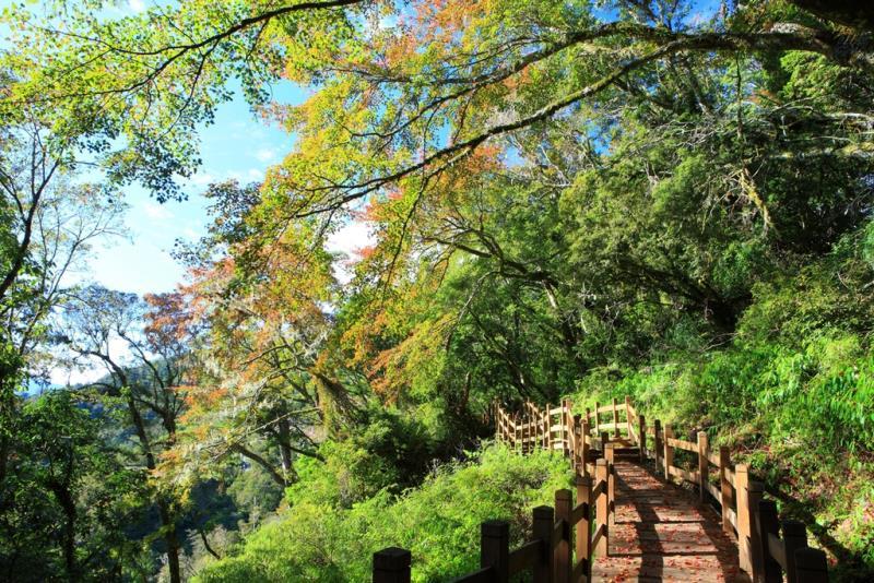 向陽国家森林遊楽区