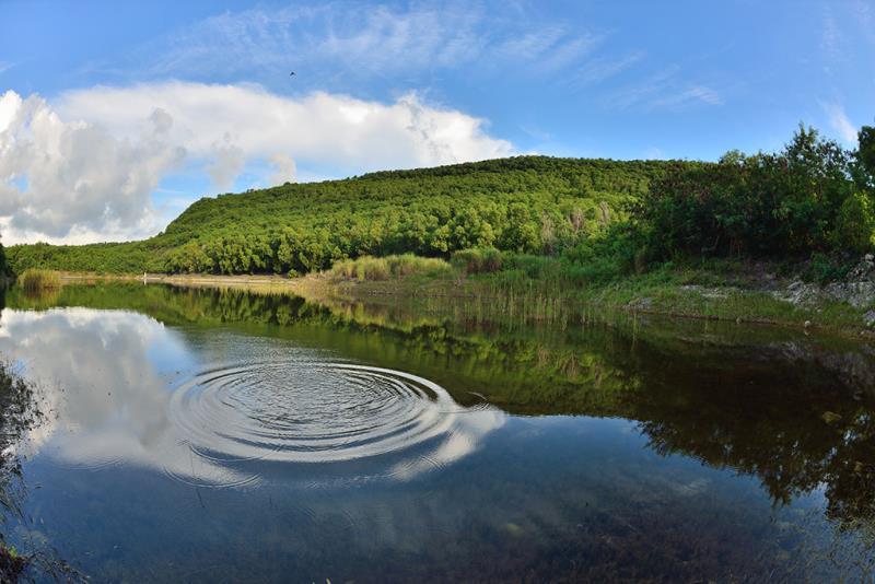 半屏湖湿地公園