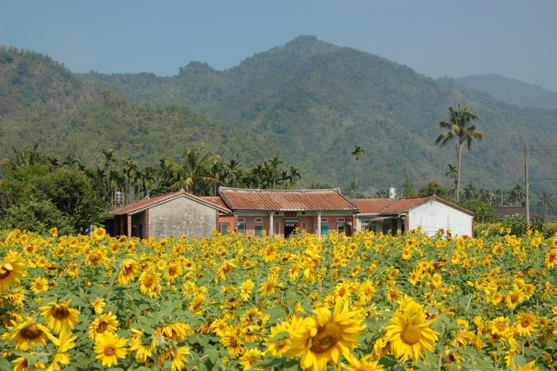美濃区―人情味豊かな美しい町
