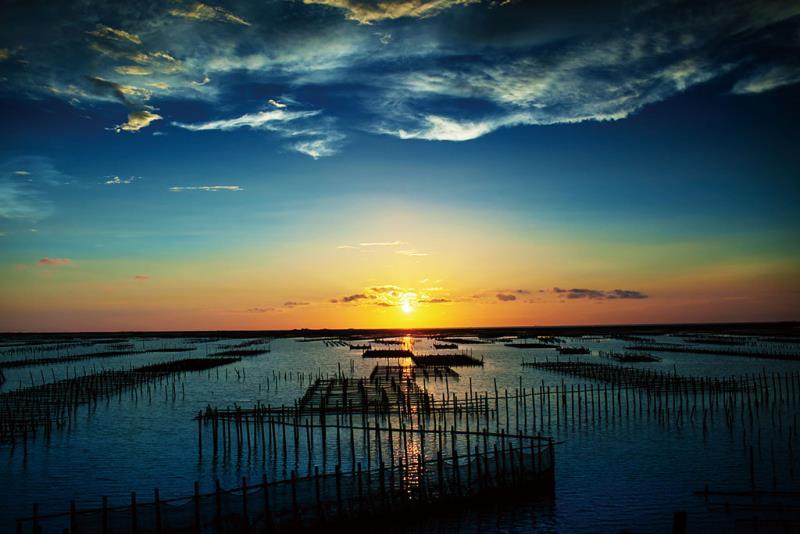 台南の七股北門-海浜と生態の旅2日間ツアー