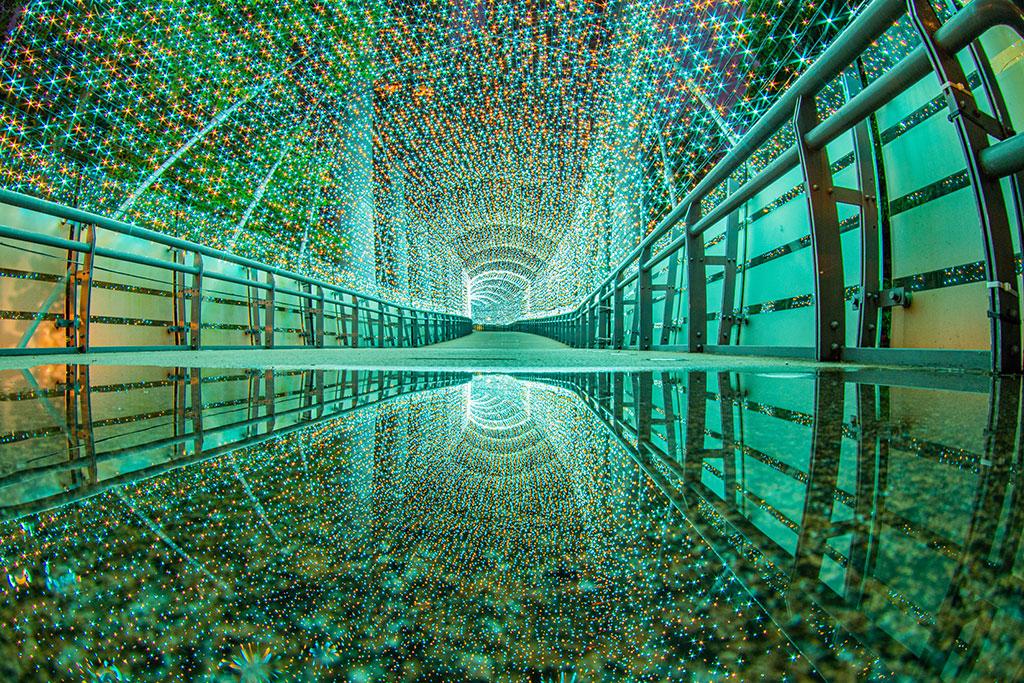 緑色のトンネル  年度:2019  写真提供:新北市政府観光旅遊局