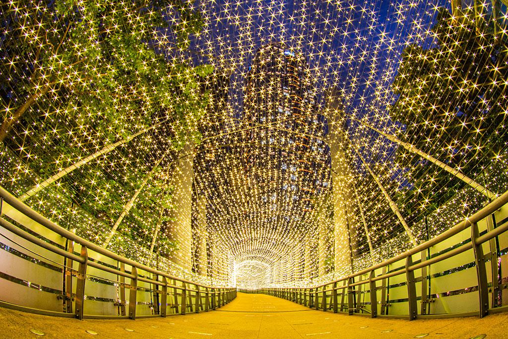 黄色のトンネル  年度:2019  写真提供:新北市政府観光旅遊局