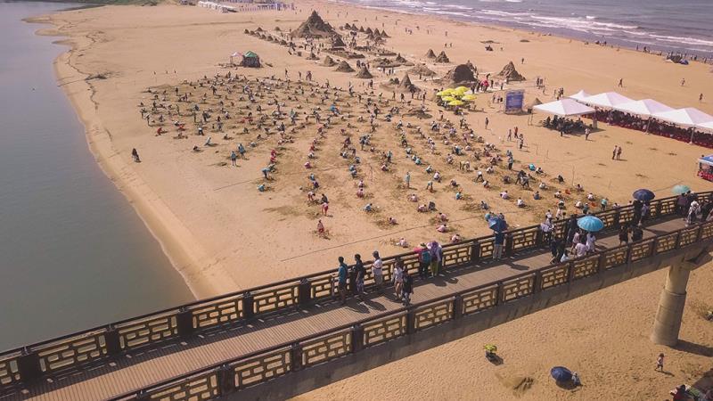 310人が同時にイルカの砂の彫刻を作成します